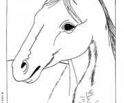 Coloriage Portrait de Cheval facile