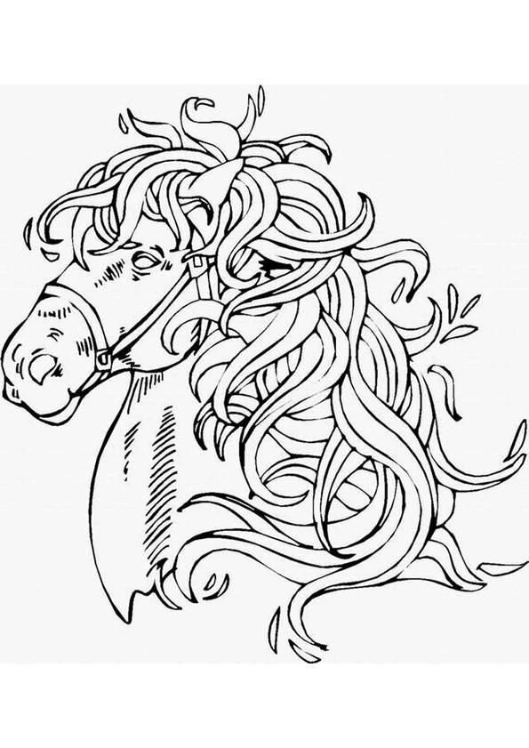 Coloriage et dessins gratuits Portrait de Cheval magique à imprimer