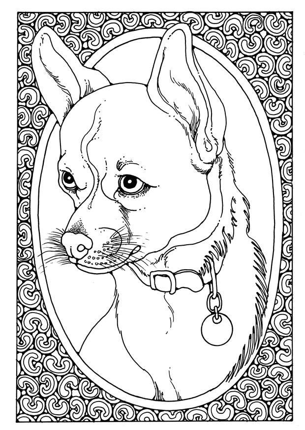 Coloriage et dessins gratuits Portrait de Chien à imprimer