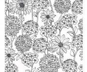 Coloriage et dessins gratuit Adulte Fleurs de Jardin à imprimer