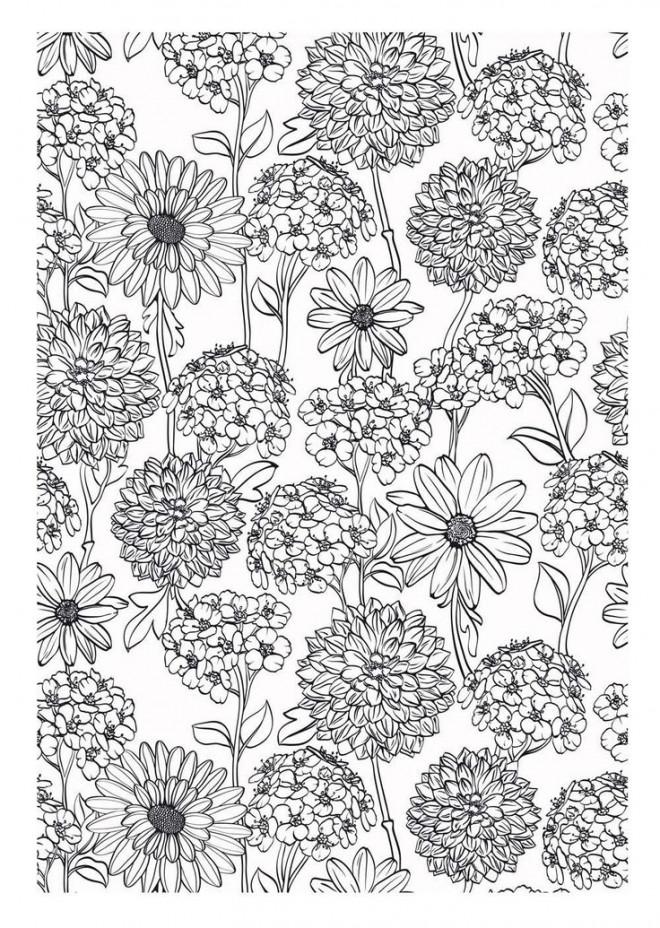 Coloriage et dessins gratuits Adulte Fleurs de Jardin à imprimer