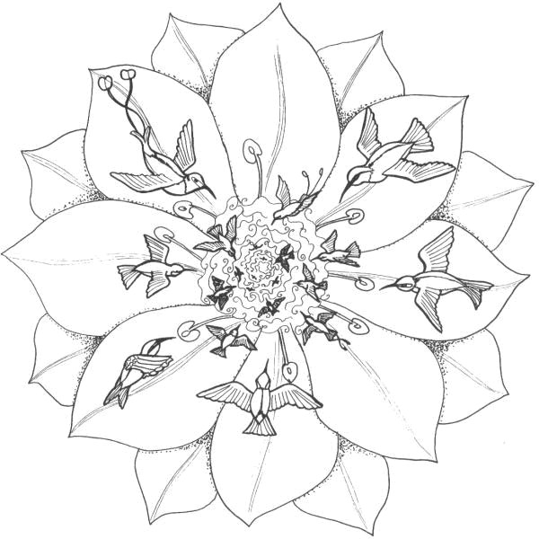 Coloriage et dessins gratuits Fleur et Oiseaux pour relaxer à imprimer