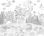 Coloriage et dessins gratuit La vie dans la Forêt à imprimer