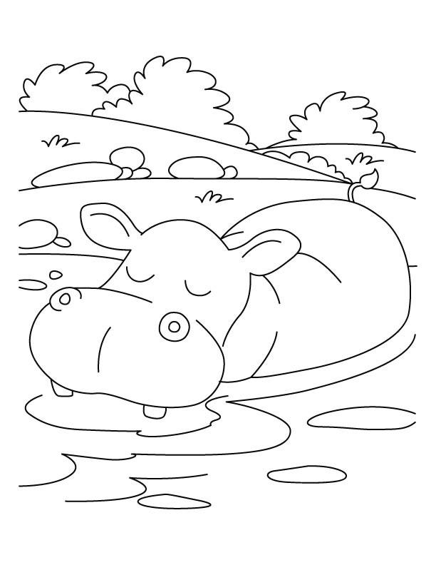 Coloriage et dessins gratuits Relaxant animaux d'afrique à imprimer
