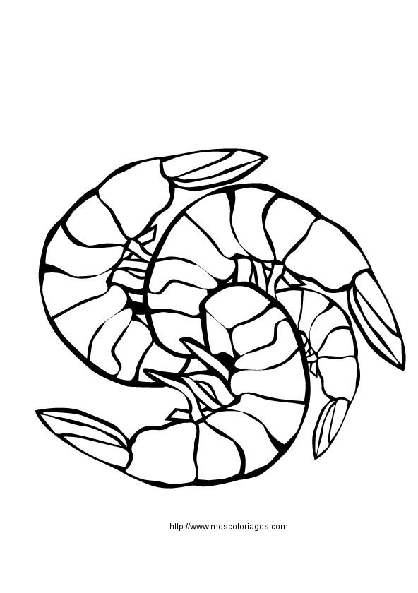 Coloriage et dessins gratuits Le Repas Fruits de Mer à imprimer