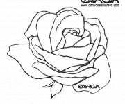 Coloriage Rose aimable