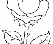 Coloriage Rose maternelle
