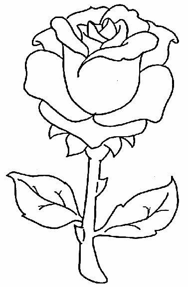 Coloriage et dessins gratuits Rose maternelle à imprimer