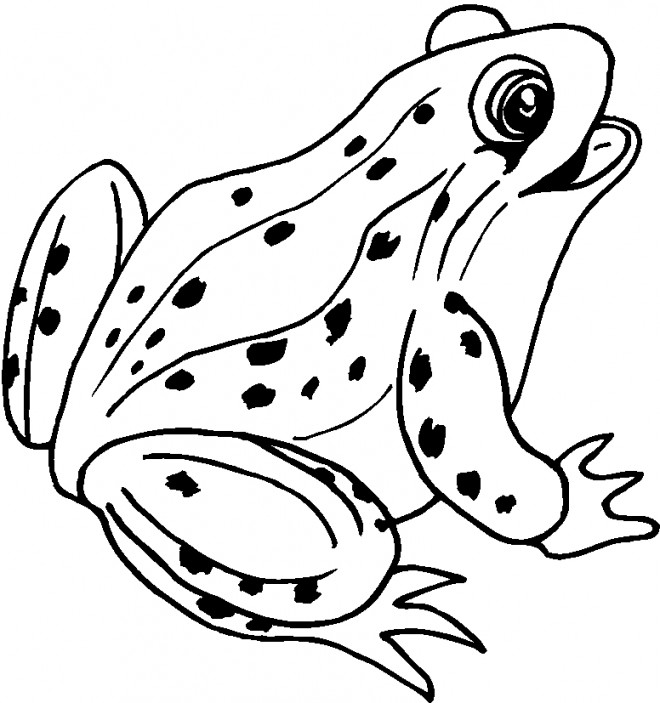 Coloriage et dessins gratuits Grenouille mignonne à imprimer