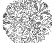 Coloriage Adulte Nature