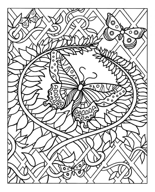 Coloriage et dessins gratuits Adulte Papillon difficile à imprimer