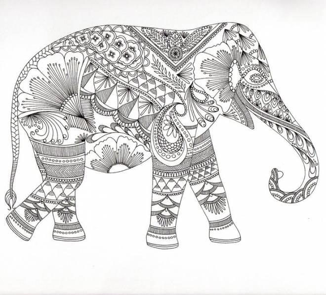 Coloriage A Imprimer Difficile Elephant.Coloriage Anti Stress Elephant Dessin Gratuit A Imprimer
