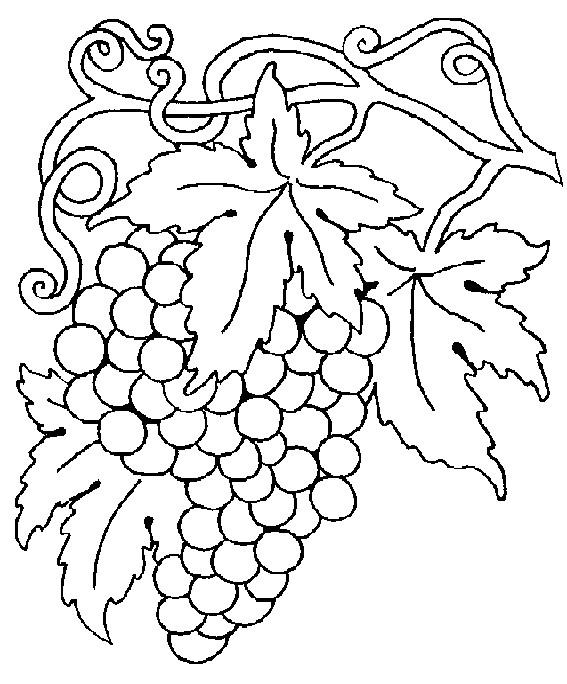 Coloriage et dessins gratuits Vintage Fruit à imprimer