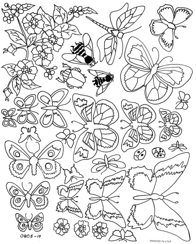 Coloriage et dessins gratuits Vintage Papillon à imprimer