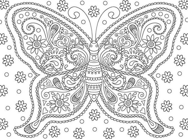 Coloriage et dessins gratuits Papillon Adulte Fleuri à imprimer