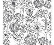 Coloriage Zen Fleurs