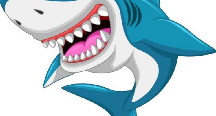 Comptine Le requin
