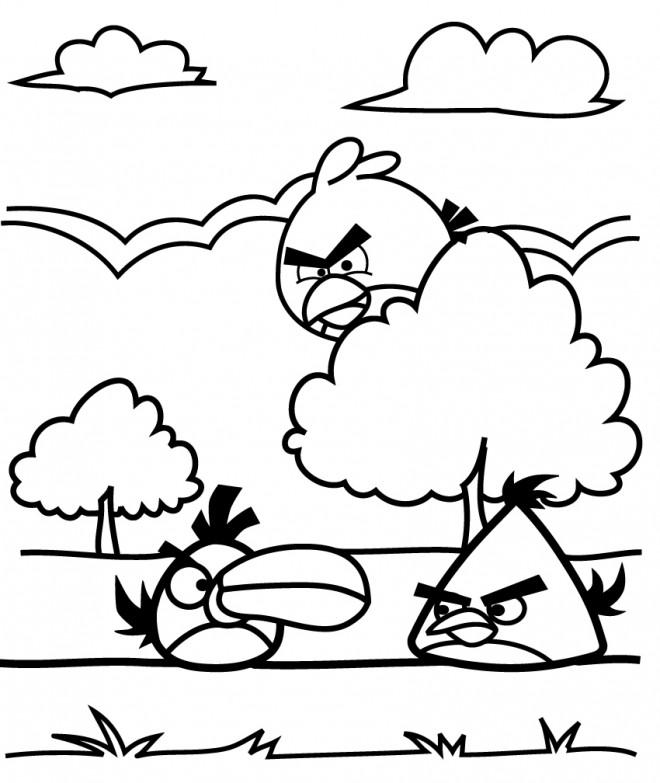 Coloriage et dessins gratuits Angry Birds cachés à imprimer