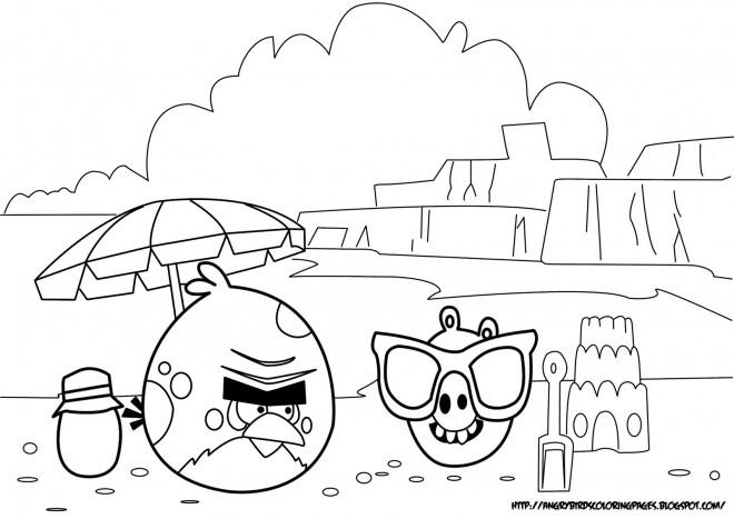 Coloriage et dessins gratuits Angry Birds sur La Plage à imprimer