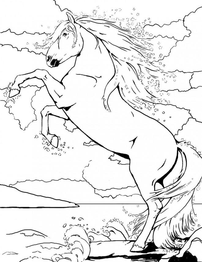 Coloriage et dessins gratuits Bella Sara le cheval saute à imprimer