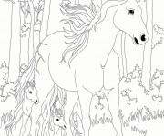 Coloriage Bella Sara: Les chevaux