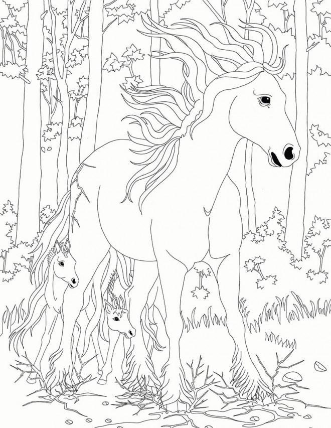Coloriage et dessins gratuits Bella Sara: Les chevaux à imprimer