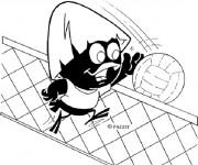 Coloriage Calimero joue du volley ball