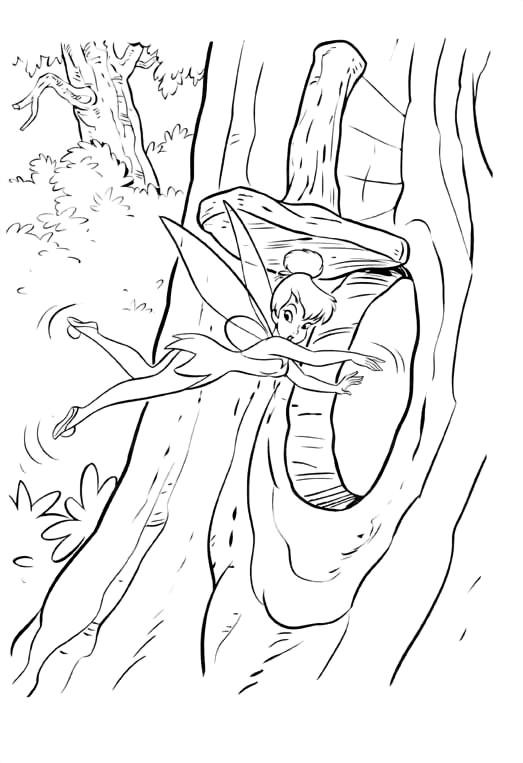 Coloriage f e clochette dans l 39 arbre dessin gratuit imprimer - Peter pan dessin anime gratuit ...