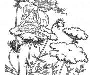 Coloriage et dessins gratuit Elfe Papillon à imprimer