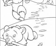 Coloriage dessin  Frere des Ours 11