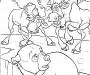Coloriage dessin  Frere des Ours 13
