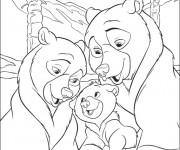 Coloriage dessin  Frere des Ours 7