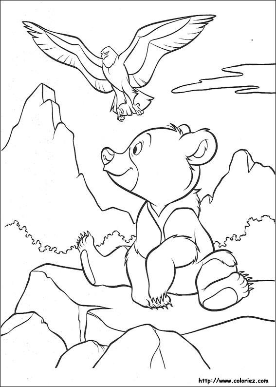 Coloriage et dessins gratuits Frère des Ours en couleur à imprimer