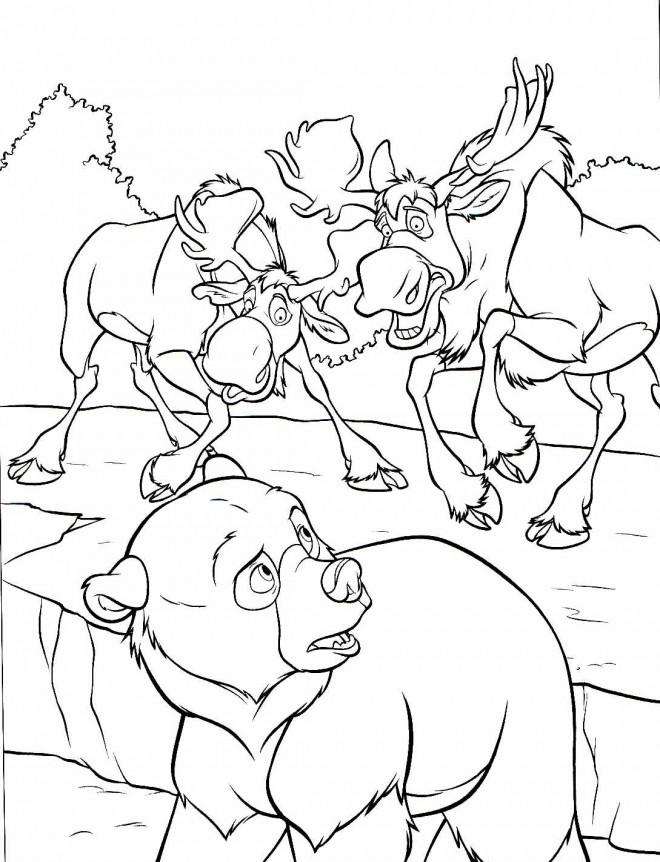 Coloriage et dessins gratuits Frère des ours Muche à imprimer