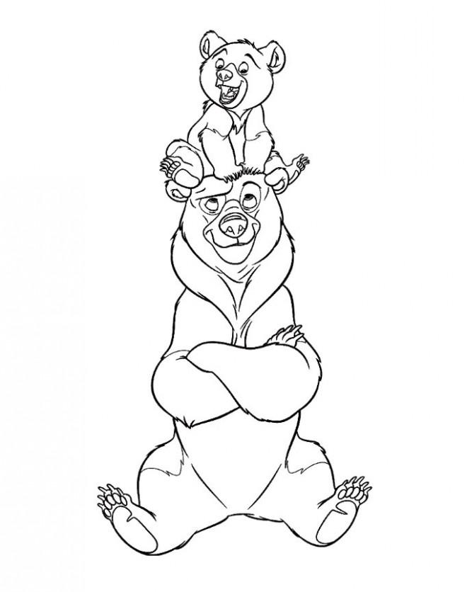 Coloriage et dessins gratuits Ours humoristiques à imprimer