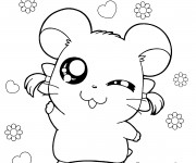 Coloriage Dessin Hamster Hamtaro