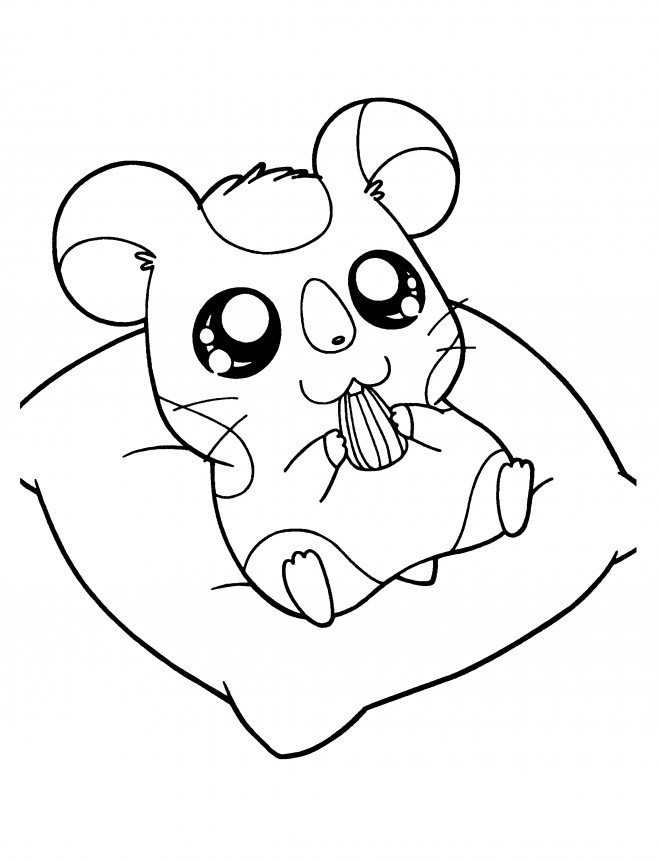 Coloriage hamtaro hamidou dessin gratuit imprimer - Hamster dessin anime ...