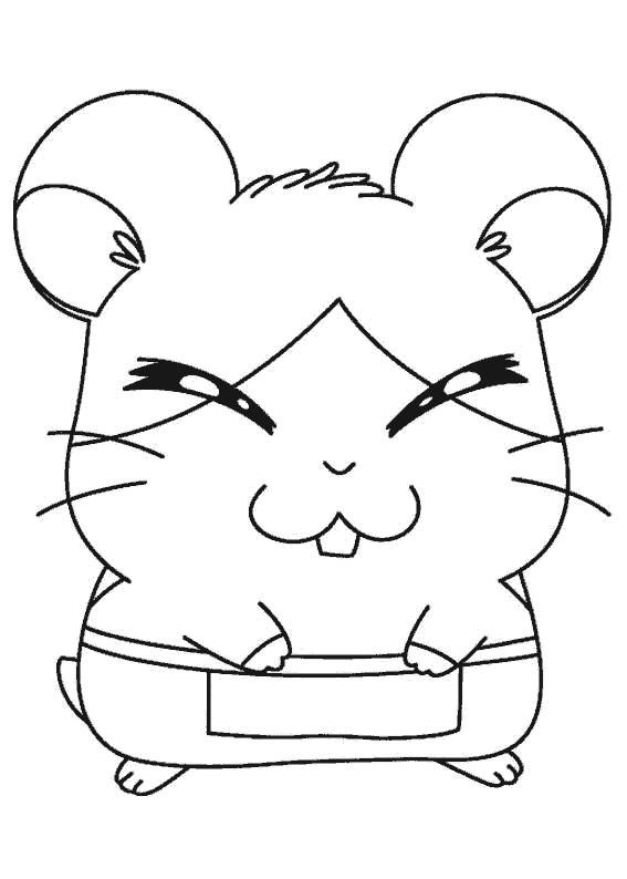Coloriage et dessins gratuits Hamtaro Topla à imprimer