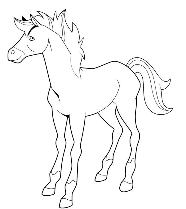 Coloriage et dessins gratuits Horseland à imprimer à imprimer