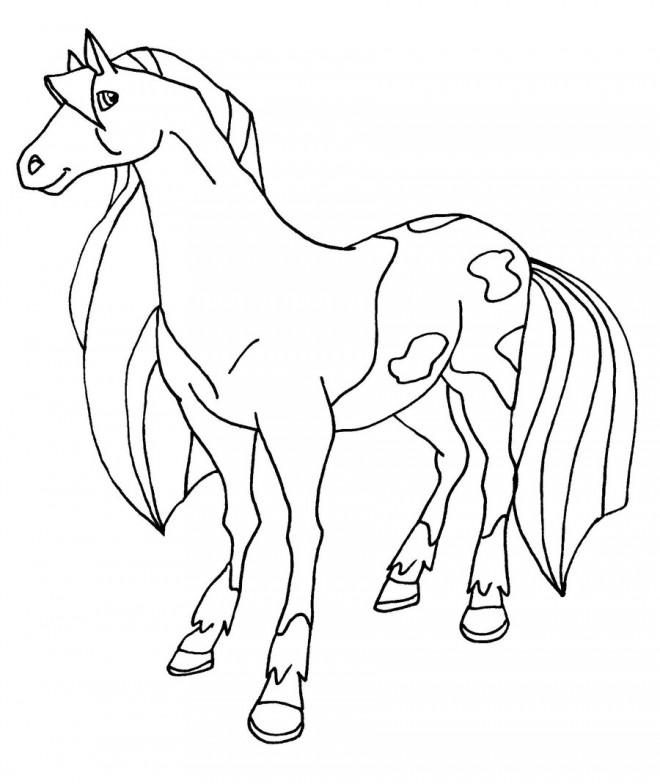 Coloriage et dessins gratuits Horseland le film à imprimer