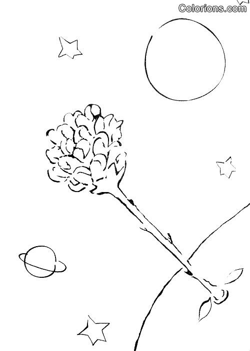 Coloriage et dessins gratuits Le petit prince coloriage gratuit à imprimer