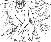Coloriage et dessins gratuit Les Pingouins  Les Rois de la glisse à imprimer