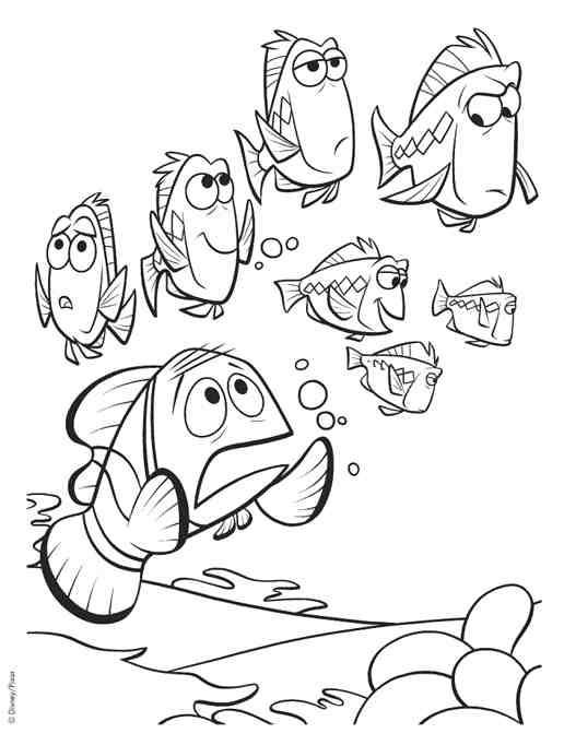 Coloriage et dessins gratuits Marin cherche Nemo à imprimer