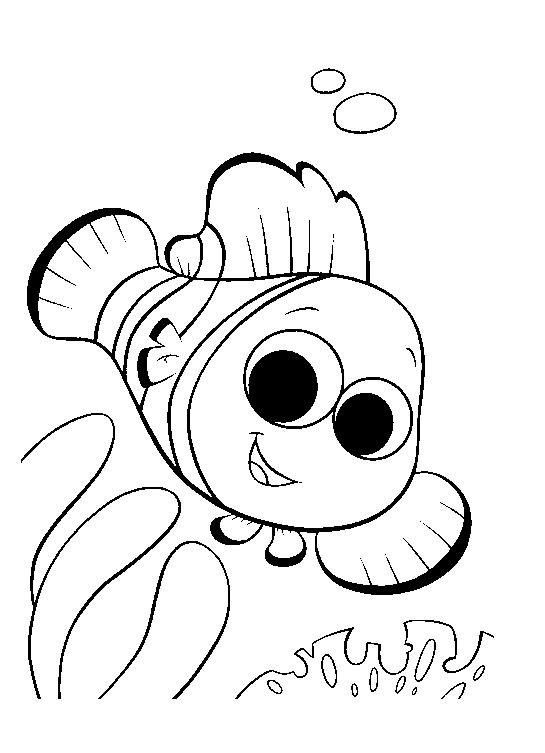 Coloriage et dessins gratuits Poisson clown Nemo à imprimer