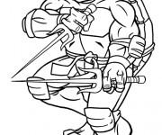 Coloriage ninjago 5 gratuit imprimer en ligne - Dessin anime tortues ninja ...