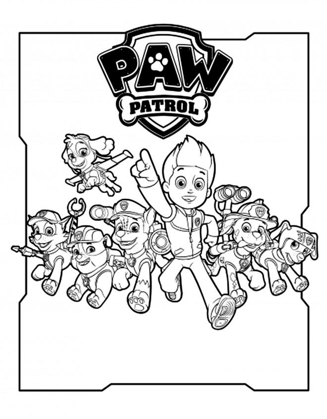 Coloriage Pat Patrouille 1 Dessin Gratuit à Imprimer