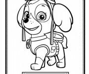 Coloriage et dessins gratuit Pat Patrouille et la belle Stella à imprimer