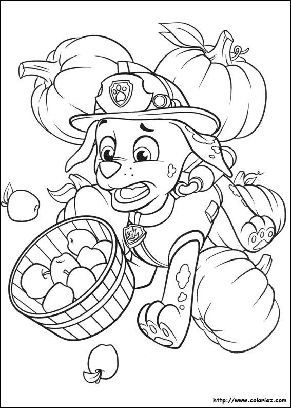 Coloriage et dessins gratuits Pat Patrouille et la maladresse de Marcus à imprimer