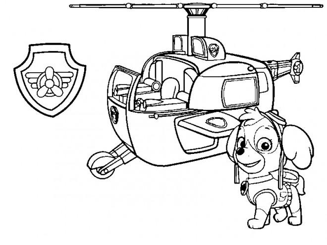 Coloriage Pat Patrouille Stella Et L Hélicoptère