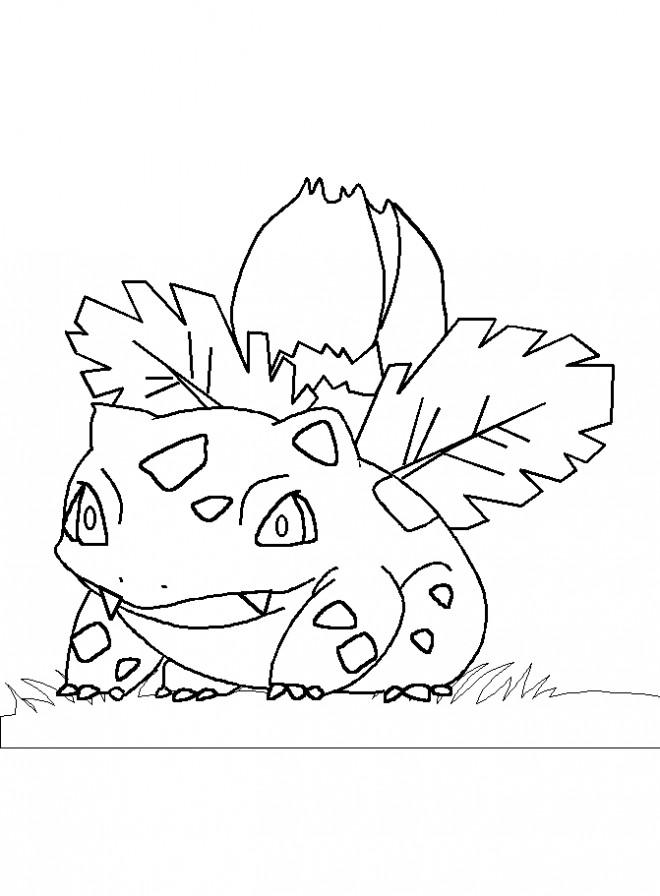Coloriage et dessins gratuits Pokémon florizarre dessin à imprimer
